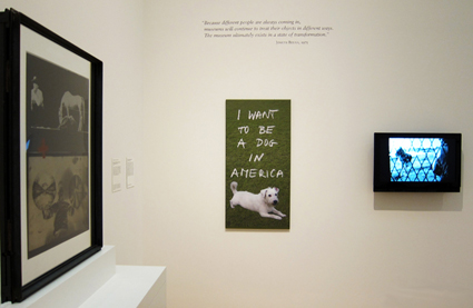 (c) Stih&Schnock I want to be a dog in America